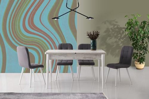 Necoline Roma Masa Retro Sandalye Gri - RA-701-3GRİ görseli, Picture 1