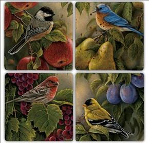 Bird İn Fruit  Doğal Taş Bardak Altlıkları - BA180 görseli