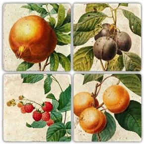 Daldaki Meyveler Doğal Taş Bardak Altlıkları  - BA268 görseli