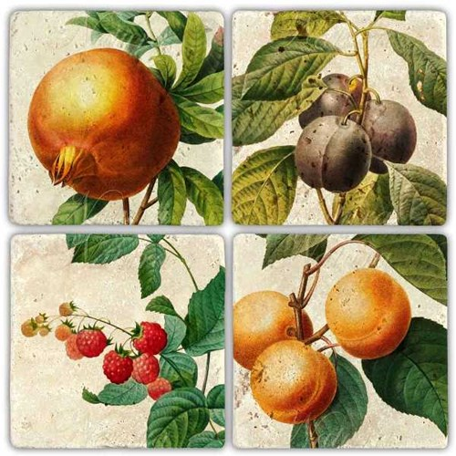 Daldaki Meyveler Doğal Taş Bardak Altlıkları  - BA268 görseli, Picture 1